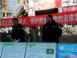 张家川县林业局开展保护野生动物和森林防火宣传活动