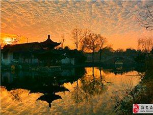 勺湖园里金色晨光