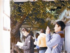 龙岩市现有馆藏文物106642件 革命文物馆藏数全省前列