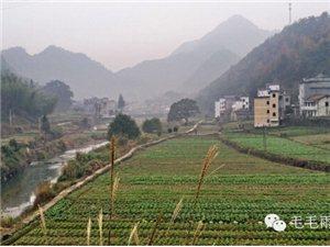 �l村�事:�R坑、士谷、小溪�村