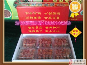 富平洋�柿�新品上市,�g迎惠�!