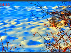 去漠河途中拍摄的雪景