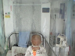 秒速飞艇广聚村4岁男孩患白血病   无助父母期盼社会爱心人士救助