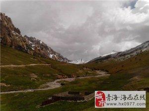 青海柏树山,海拔近4000米,有高原雪山,牧场,还有清澈见底的泉水
