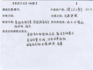 潢川建鼎国际1月2号看房日记第五篇