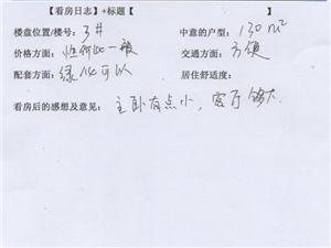 潢川建鼎国际1月2号看房日记第十三篇