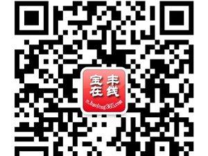 """2014""""送彩金的娱乐平台大全在线""""杯最具魅力QQ群网络评选大赛圆满闭幕"""