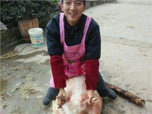 """快过年了大家的在杀年猪了:""""网友杀年猪的两张二逼照片"""""""