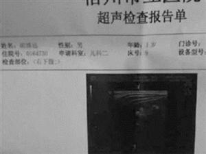 """超声报告显示1岁男童""""怀孕""""(图)"""