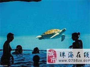 【珠海长隆海洋王国穿越大西洋区海龟馆】可以好好的去玩玩哦!