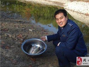 """扶沟管理处""""绿色家园""""鱼塘养殖喜获大丰收"""