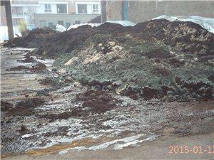 ????烟草公司自制烟草肥污染小区环境