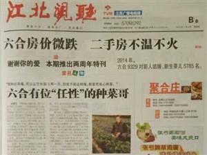 《今日六合》报道辰容蔬菜进小区