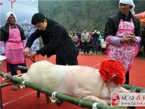 中国亢谷第三届刨猪文化节开幕了