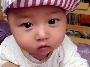 邱�偃�+隆昌在�明星����大��u�x�①��N