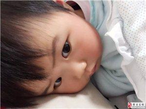 �x宇��+隆昌在�明星����大��u�x�①��N