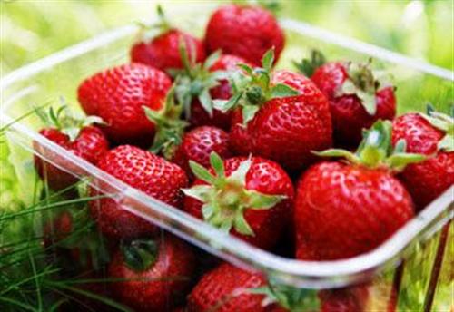 女性护肤放辐射多吃这些水果