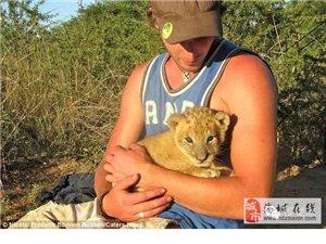 人狮情未了,看完心都融化掉了。。。