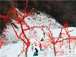 周末去甘山赏雪吧!
