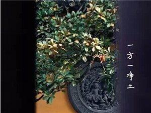 静心听佛语 佛度有缘人《菩萨泪》?太美了