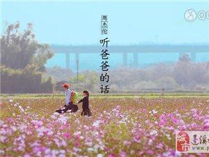 周杰伦《听爸爸的话》MV剧情超虐心 歌词MV视频完整大曝光