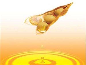 防城港大豆油首次出口马来西亚