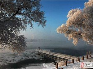 """东北闻名已久的奇景""""江城雾凇"""""""