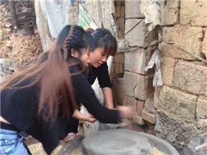手机拍拍:农村姑娘就是贤惠