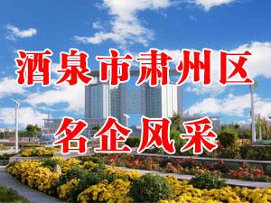 酒泉市肃州区名企风采(2014年度)