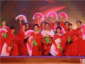 2015阜城县羊年春节晚会精彩片段剪辑(高清)