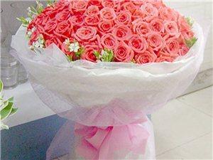 芬芳美丽 鲜花伴你