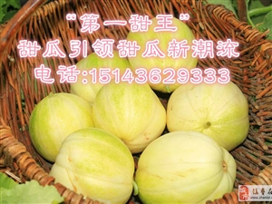 吉林省镇赉县建平甜瓜产业协会给大家拜年了