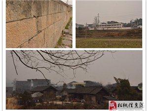 """2015春节""""乡村小学捐书・杨芳故居之旅""""希望您的参与!"""