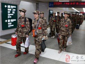 香港民建联建议允许港人参军  非硬性规定服兵役(图)