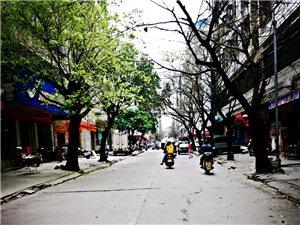 高城小巷、不一样的风情、异样情怀