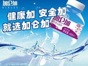 加仑加纯天然矿物质水