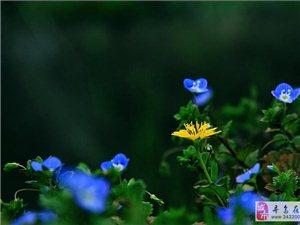 duang~~春天来啦。。。踏着春的印记放松自己吧