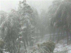 2015年澳门威尼斯人官网新春第一场雪