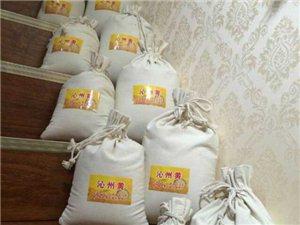 纯正沁州黄小米,养胃,补身子,赠品,电话18153071978