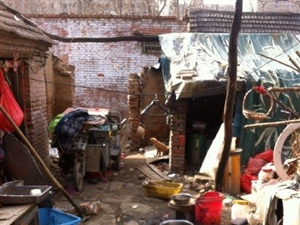 永城演集镇张楼村郭庄,有一家非常可怜的人家,希望有人能帮帮他们!