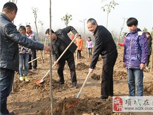 项城四大班子领导参加义务植树活动