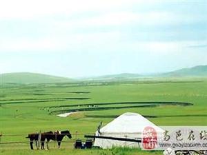 高邑青年旅行社玩转希拉穆仁草原、库布其沙漠双飞三日游 498元