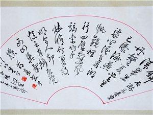 著名诗书画家蒋亮作品展示(流动在血液里的音符)