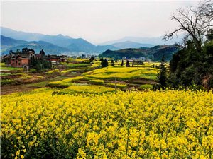 洛香,一个美得让人无法形容的地方