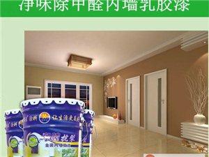 家庭装修 就选堂饰王乳胶漆 质量可靠