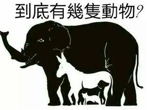 ?神秘的图:有人看出4种动物,有人看出10种,你能看出几种呢?