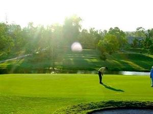 全国66家高尔夫球场被取缔涉广州花都一高球场