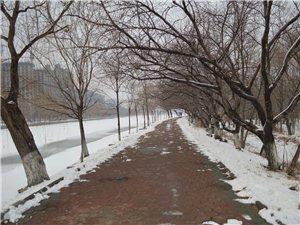 2015年初春大洼东湖公园随摄