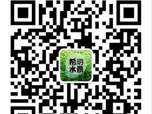 烟火水族-希玥杯 水景大赛 (第一季)