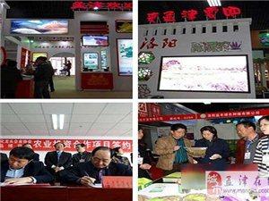 电脑下注网站60余种农产品亮相中国洛阳名优产品博览会